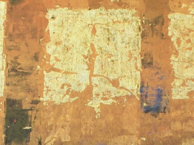 日本画家・関谷理。技巧を尽くす表現方法から[-VIRTUOSO-]と呼ばれる気鋭の現代作家。具象と抽象、静寂と燦爛、美しい色彩が調和する作品を生み出す作家の制作にせまります。